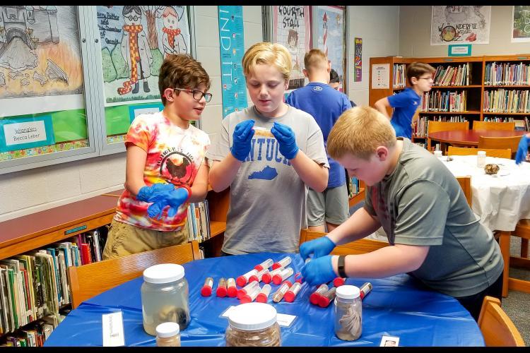 WJMS students examine UK VDL specimens