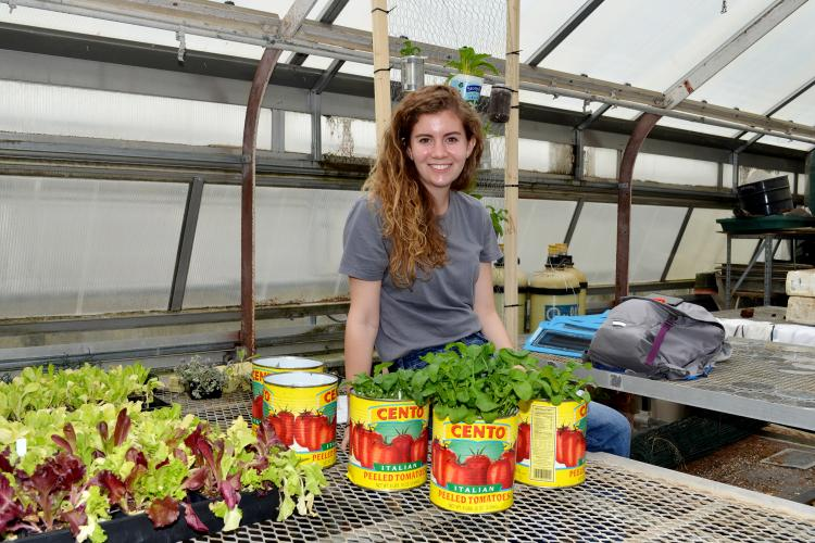 Anna Townsend's research sought to identify the most economical and feasible indoor garden for the student organization.