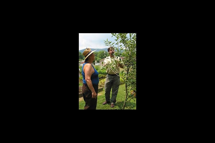 Pat Biggerstaff (left) and Extension agent Stacy White examine a fruit tree for signs of disease.