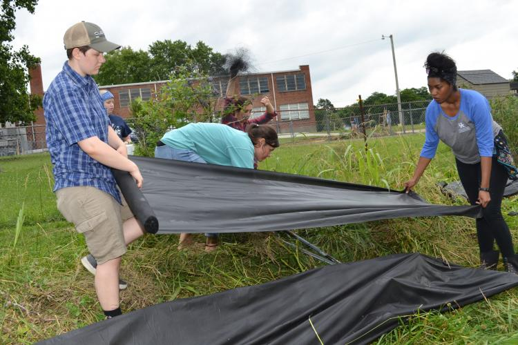 Garden volunteer Grace Lowe, left,  and LaToya Drake, Barren County family and consumer sciences extension agent, place black cloth over the swales to help with weed control. Photo by Katie Pratt, UK agricultural communications.