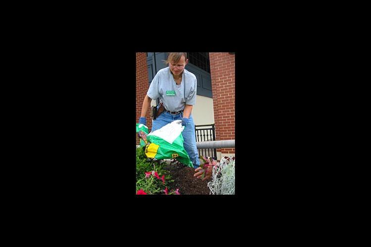 Master Gardener Jenny Gast prepares soil for planting