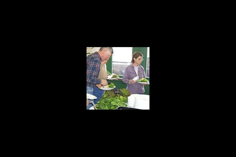 Workshop participants enjoy a soup and salad lunch with crops from Alison and Paul Weidiger's coldframe greenhouse.