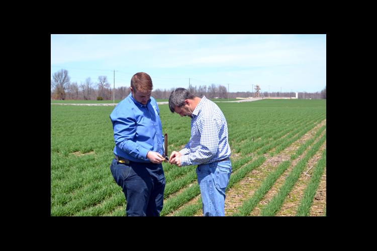 Curtis Dame, left, and Hopkins County farmer Lee Herring regularly compare notes about efficient and useful apps.