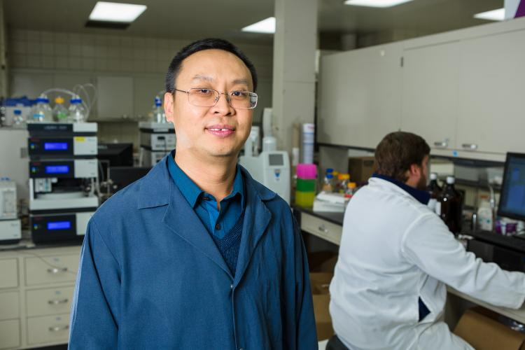 Jian Shi in his UK laboratory. Photo by Matt Barton, UK agricultural communications