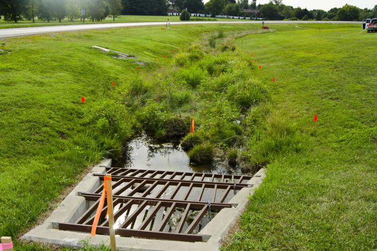 Work begins on building a bioswale in a median on Alumni Drive in Lexington.
