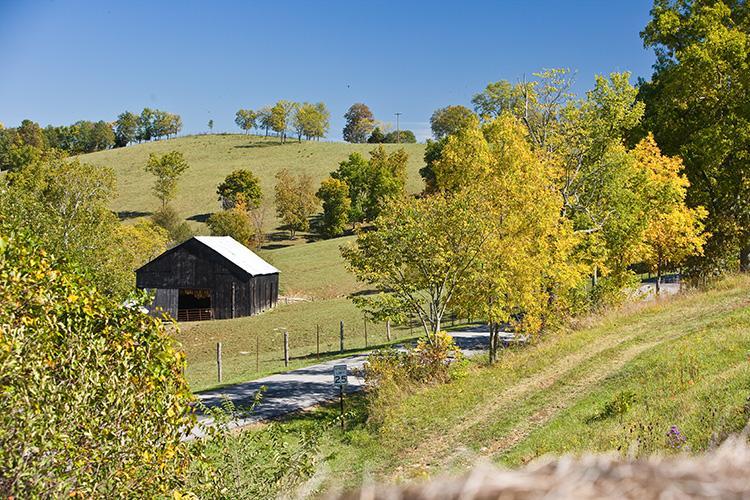 A Kentucky farm in autumn. Photo by Matt Barton, UK agricultural communications.