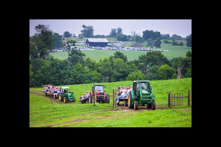 tractors in field