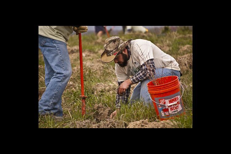 UK Landscape Architecture senior, Cameron Stone, plants a tree seedling on the land where Flight 93 crashed on 9/11. PHOTO: Carol L. Spence, UK agricultural communications specialist