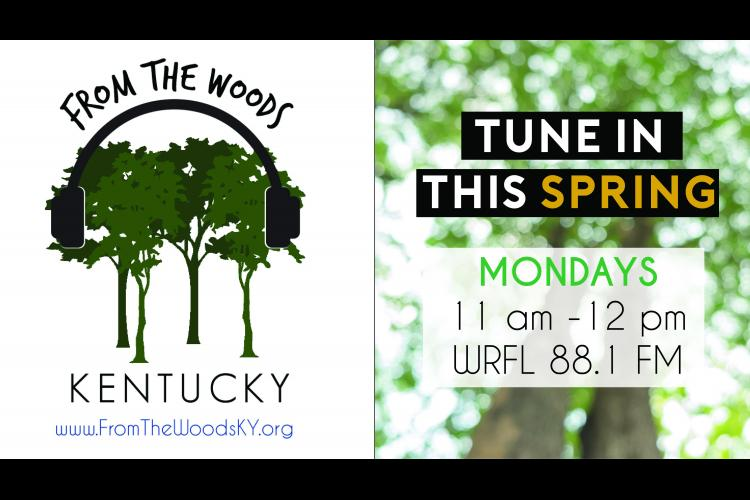 From the Woods Kentucky logo