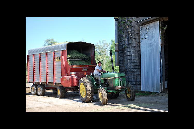Adair County dairy farmer Jonathan Gaskins hauls silage to on-farm storage.
