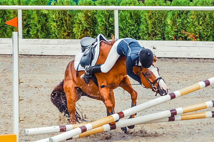 Horse show accident