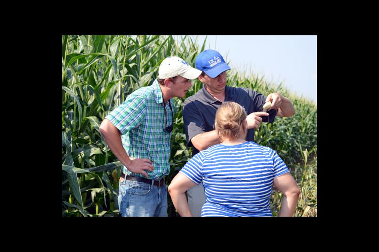 UK grain crops specialist, Chad Lee, center, shows Brad Hagan and Lauren Settles how to determine if pollination took place.