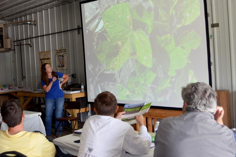 Kiersten Wise, UK extension plant pathologists show producers disease symptoms on soybeans at KATS workshop held earlier this year. Photo by Katie Pratt, UK agricultural communications.