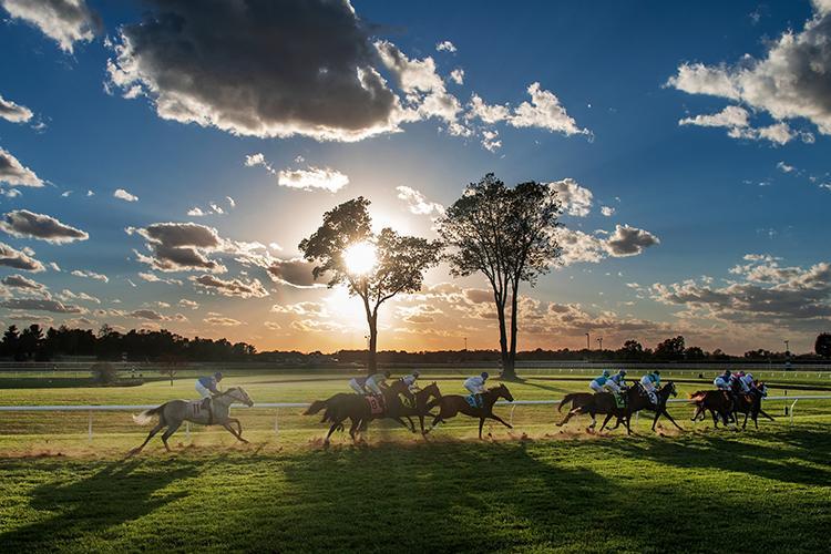 Horses racing at Keeneland.