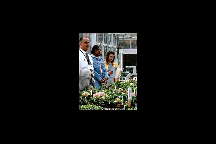 Participants in the MANRRS conference learned about flower production at a UK greenhouse.
