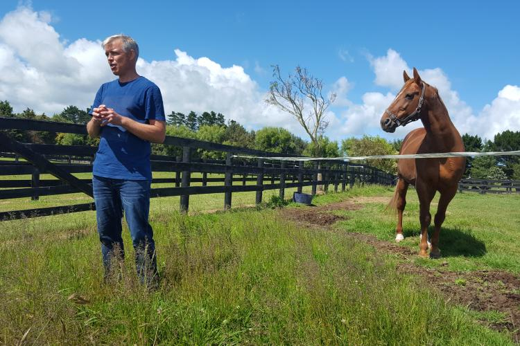 Martin Nielson educates viewers about parasite control. He is joined by Peak, a Danish-born Standardbred Trotter stallion. Location: Alabar Stud in Auckland, New Zealand. Photo credit: veterinary student Alyse Hansen, New Zealand.