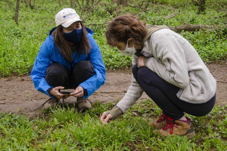 Students learn about their local environment in the Master Naturalist Program.