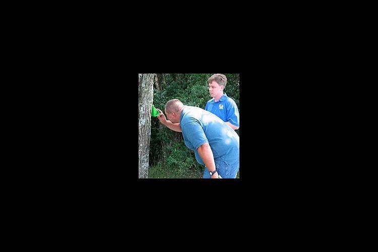 J.D. Loan checks a moth trap while Carl Harper looks on.