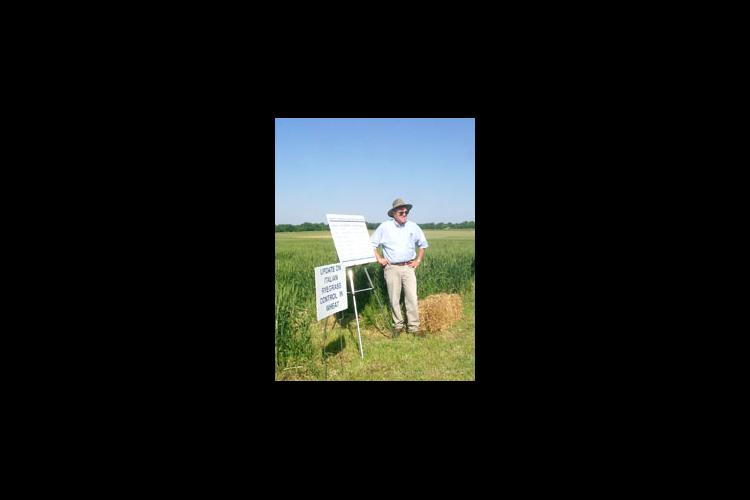 Jim Martin discusses Italian Ryegrass control during a recent UK Wheat Field Day.