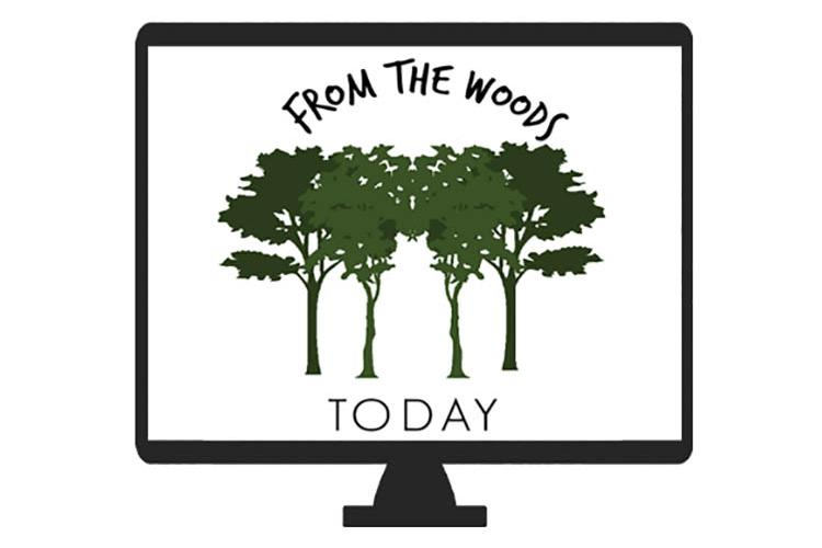 From the Woods Today logo