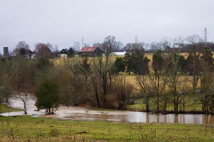 February rains flooding Kentucky pastures