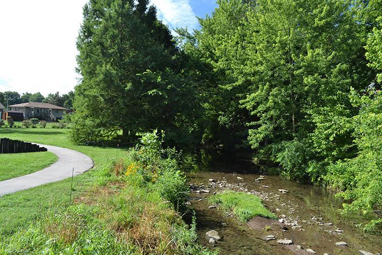 Wolf Run Creek in Gardenside Park, Lexington, Ky.