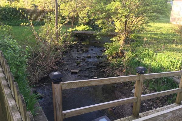 A backyard stream