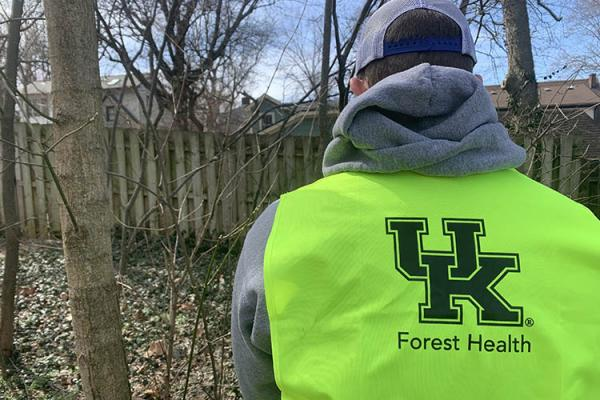 Forestry and Natural Resources student wears a UK forest health safety vest while working in The Arboretum Woods.