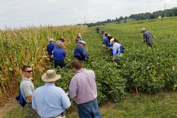 Participants from a past year's KATS training look at soybean plots at the UK Research and Education Center Farm in Princeton. Photo courtesy of the Kentucky Agriculture Training School.