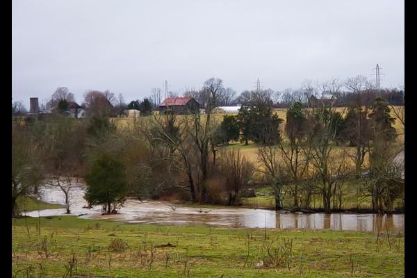 February rains flooding Kentucky pastures