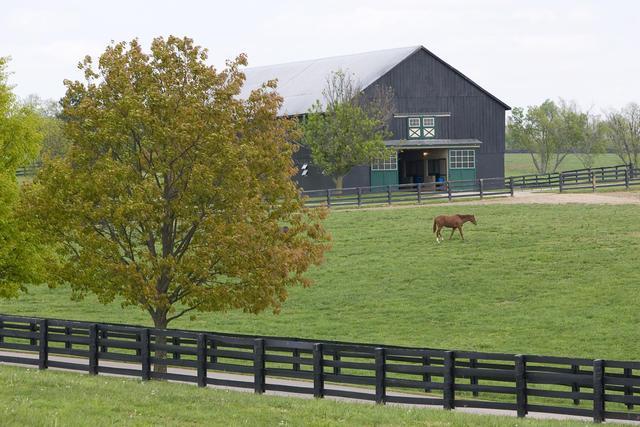 A farm in Central Kentucky