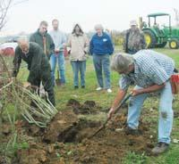 UK Extension Specialist Winston Dunwell demonstrates proper plant digging techniques.
