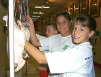 Lawrence County 4-Hers evaluate a class of chickens at the 1999 Kentucky State Fair.