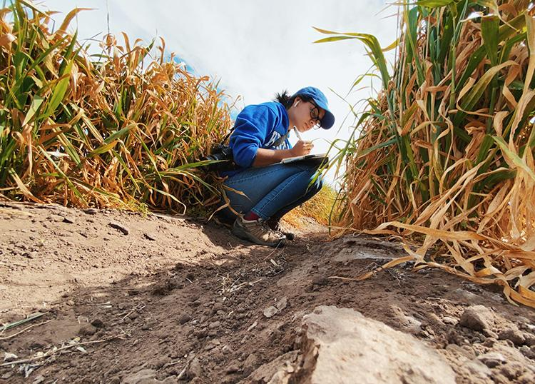 Cristina Castellano, UK graduate student, is interested in a career as an extension plant pathologist. Photo by Cristina Castellano.