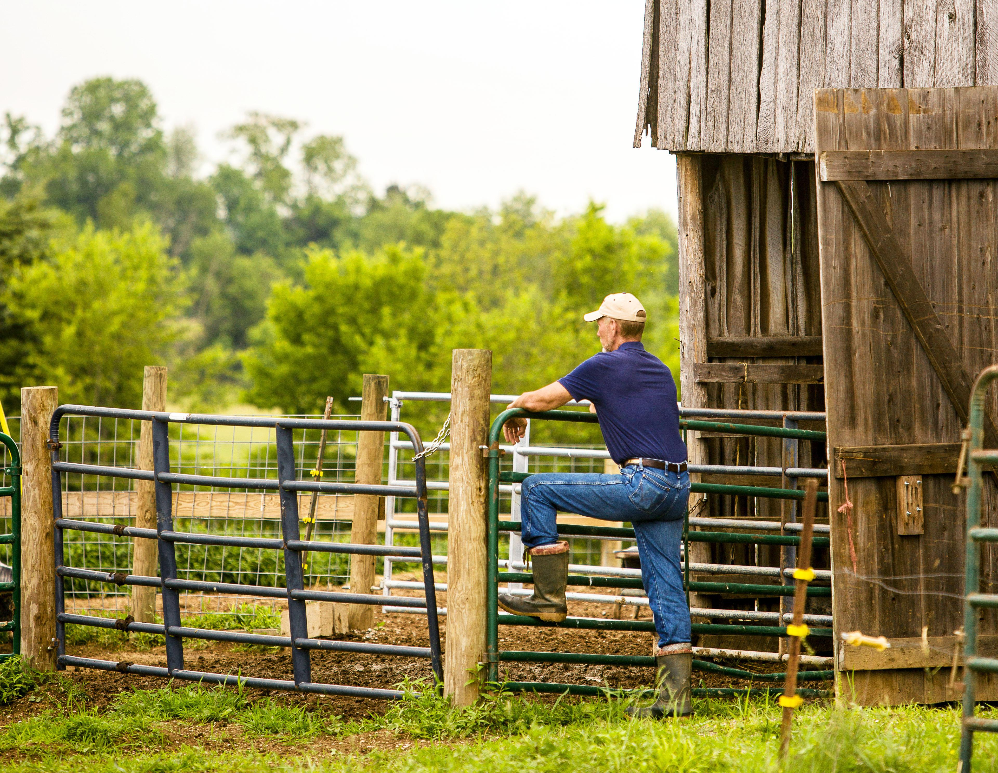 farmer, fence, barn, farm