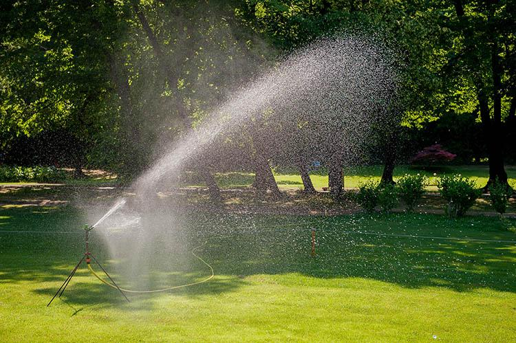 Irrigating turf