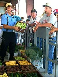 Steve Sauder, manager of the Fairview Produce Auction Inc., holds a box of green tomatoes as auctioneer Sam Wright tries to get buyers to purchase the box.